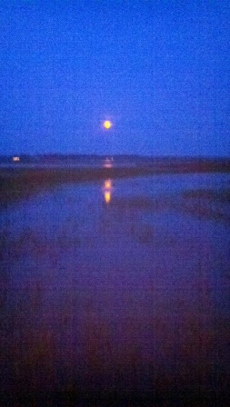 moon-rise-over-the-marshes-of-glynn